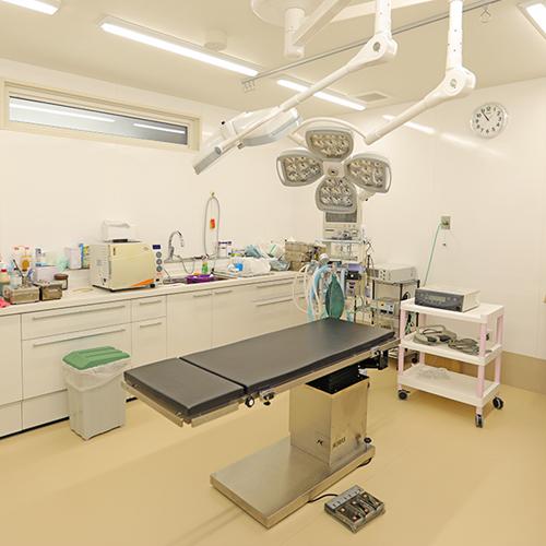 大志田動物医院 手術室